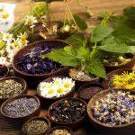 La naturopathie est plus qu'une simple thérapie